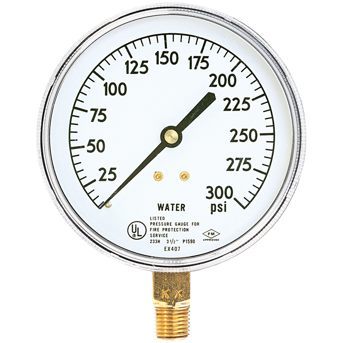 Water Gauge, 0-300 psi